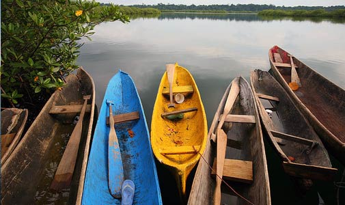 bocas-sustainable-tourism-alliance-boats, Central America, Panama, Bocas Del Toro, DMO, sustainable, tourism, responsible travel, culture, environment, visitor information, bocas town, BSTA